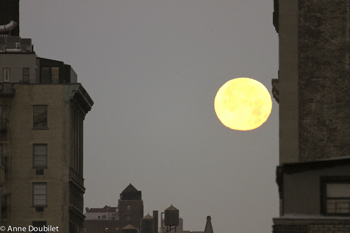 Winter solstice moonrise the morning after total eclipse, Dec. 21, 2010, New York City.